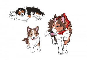 Ranger:Rendezvous Momomaru, Kickstarter 2014, Ed Oh