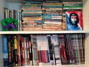 Megan's bookshelf