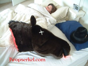 Kropserkel Horse Head pillow, http://www.kropserkel.com/horse_head_pillow.htm