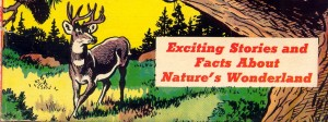 Feature Image, public domain, Mark Trail's Adventure book of nature