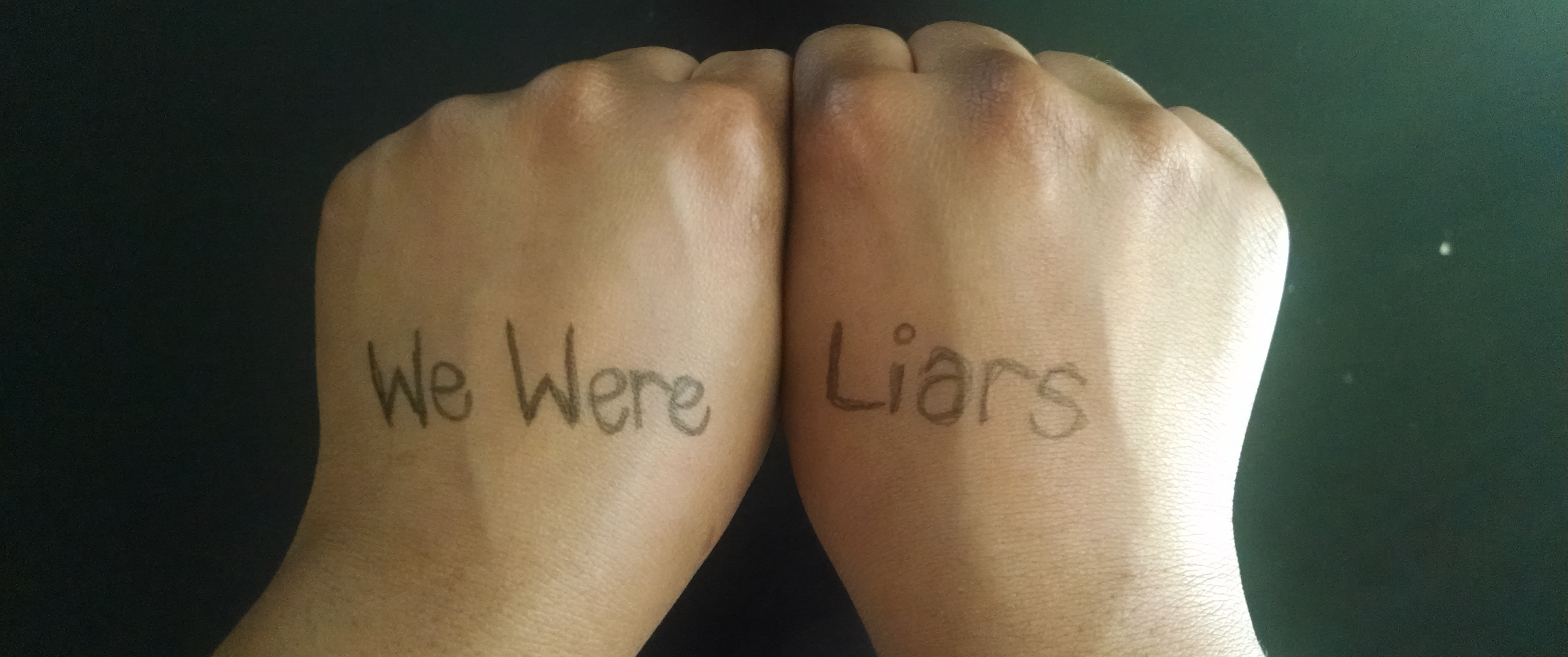Ardo Omer. Banner. We Were Liars