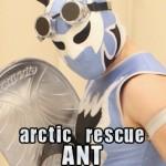Arctic Rescue Ant, Chikara, chikarapro.com