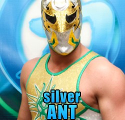 Silver Ant, Chikara, chikarapro.com