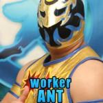 Worker Ant, Chikara, chikarapro.com