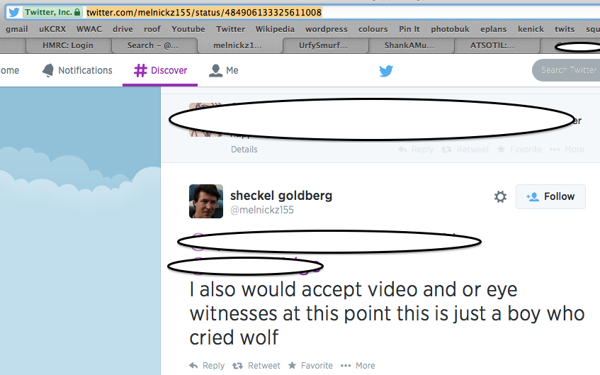 Screen Shot of Tweets regarding Skyler Page, Jul 2014
