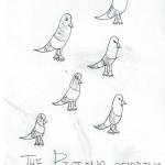 pigeons-Lana