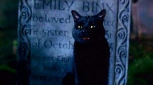 Hocus Pocus Zachary Binx the cat
