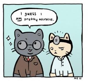 doctorcatlawyercat