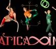 AI Circus logo