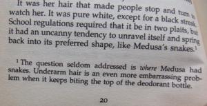 Terry Pratchett, Soul Music, excerpt, page 20