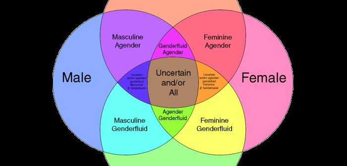 Rethink That Rule: Genderswapping, Crossplaying, and Reinforcing Gender Binaries