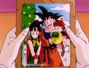 Chi Chi, Dragon Ball Z anime, OLM & Toriyama