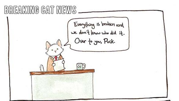 Breaking-Cat-News-012