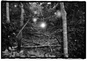 Cameron Park, Waco, TX ghostly orbs