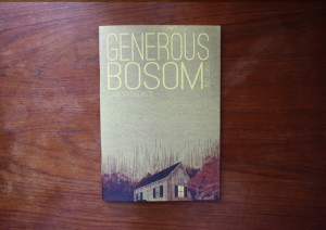 Conor Stechschulte's Generous Bosom, Breakdown Press
