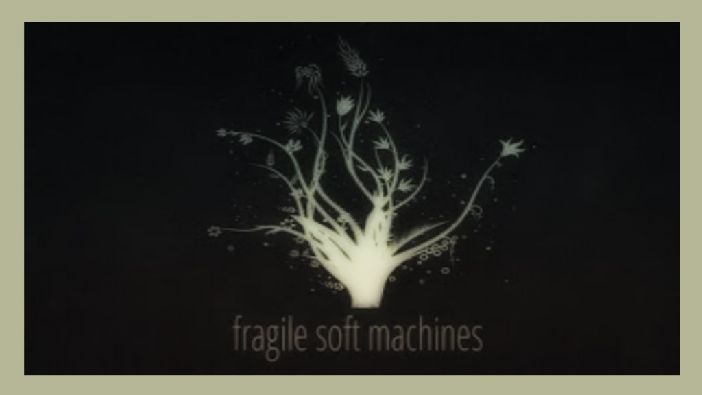 fragile soft