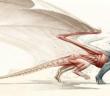 A Natural History of Dragons Marie Brennan, Tor.com, 2014