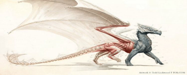 Dogears: An Unscripted History of Dragons
