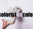 Colorist on Color banner