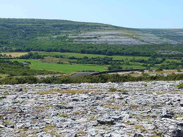 A photo of Burren. The photo was taken from the crest of a hill and looks out onto a landscape of gently rolling hills covered in fields and trees. The ground in the foreground is rocky with small patches of grass; farther on, the fields and trees dominate.