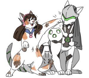 Overwatch cats