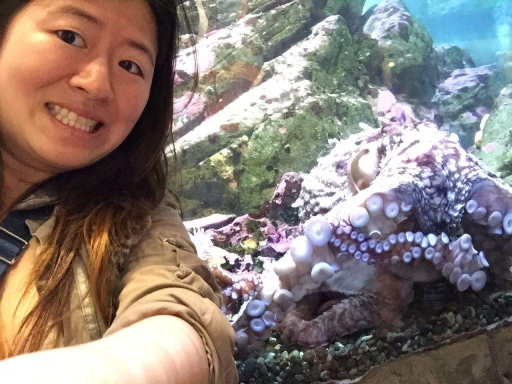 Jo vs the aquarium