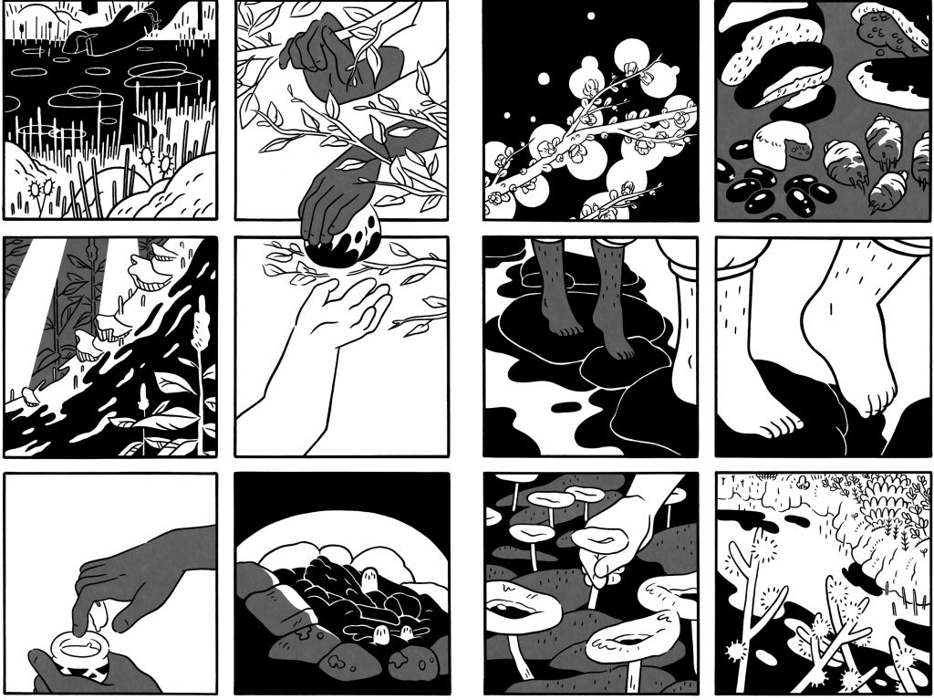 Preview pages from Witchlight by Jessi Zabarsky. Image courtesy Kevin Czap/Czap Books.