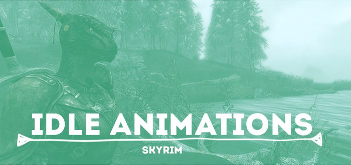 Idle Animations – From Skyrim, With Love