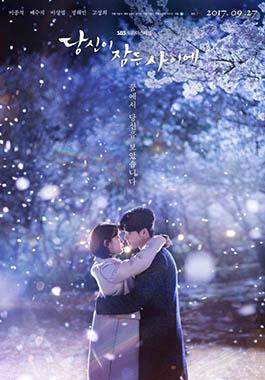 While You Were Sleeping SBS drama