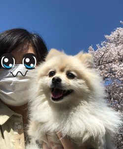Yuu Watase and her dog Popo-chan, as posted to her personal Twitter: https://twitter.com/wataseyuu_/status/978626949944717312