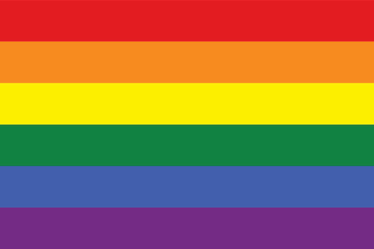 Rainbow flag, an iconic pride symbol
