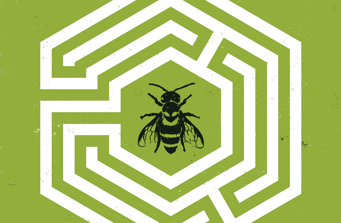 A white maze in a hexagon shape on a green background. A black bee is in the middle of the maze. The Seeds #1, Ann Nocenti & David Aja, Dark Horse, 2018