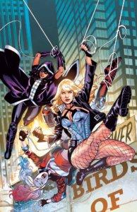 Harley, Huntress and Black Canary swinging through Gotham