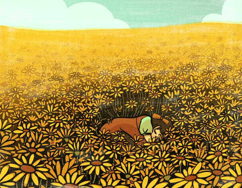 A small child is curled up, sleeping and huddled, sleeping in a field of sunflowers against a daylit sky.