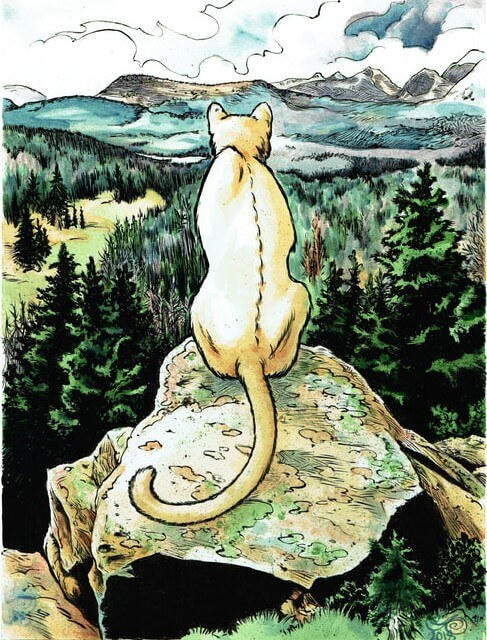A large cougar sits atop a rocky mountain overlooking an evergreen forest