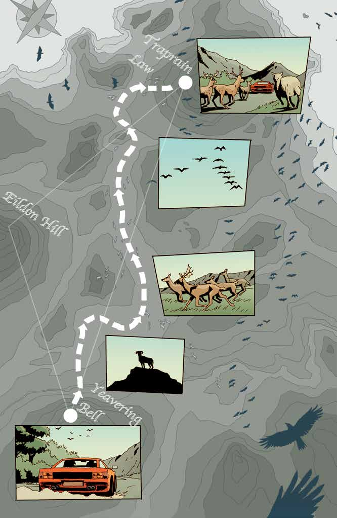 A map showing the path driven and the animals they've passed on the way