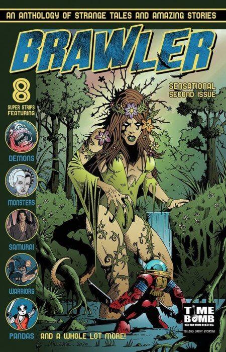 Cover of Brawler 2