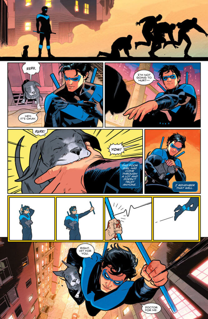 Nightwing rescuing the three legged dog