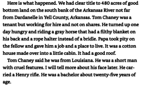 Text from True Grit by Charles Portis